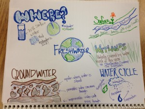 Freshwater Art Notes