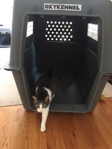 Newton tests out Devon's crate