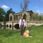 Gardens, blue sky, and a lovely dog